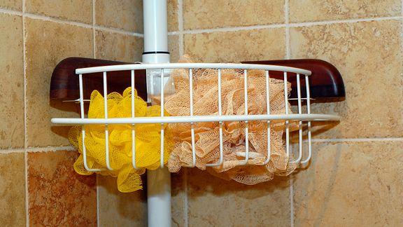 Sponges Loofahs Shower