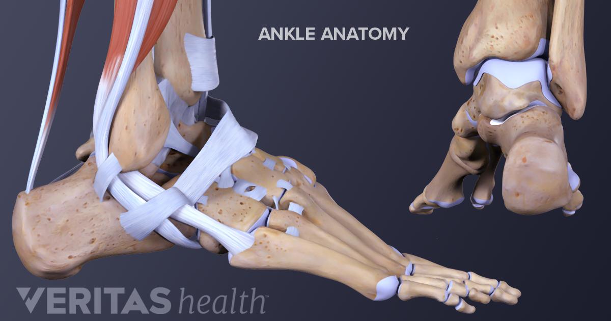 Ankle Osteoarthritis Symptoms