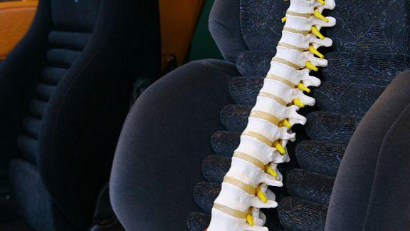 Spine Car Seat