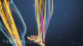 Posterior view of the feet showing sciatica pain in the foot.