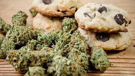 Medical marijuana and edible cookies for chronic pain
