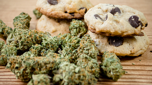 Image of medical marijuana and edible cookies for chronic pain