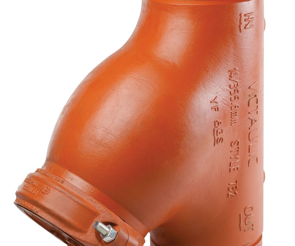 Series W732 AGS Wye Type Strainer