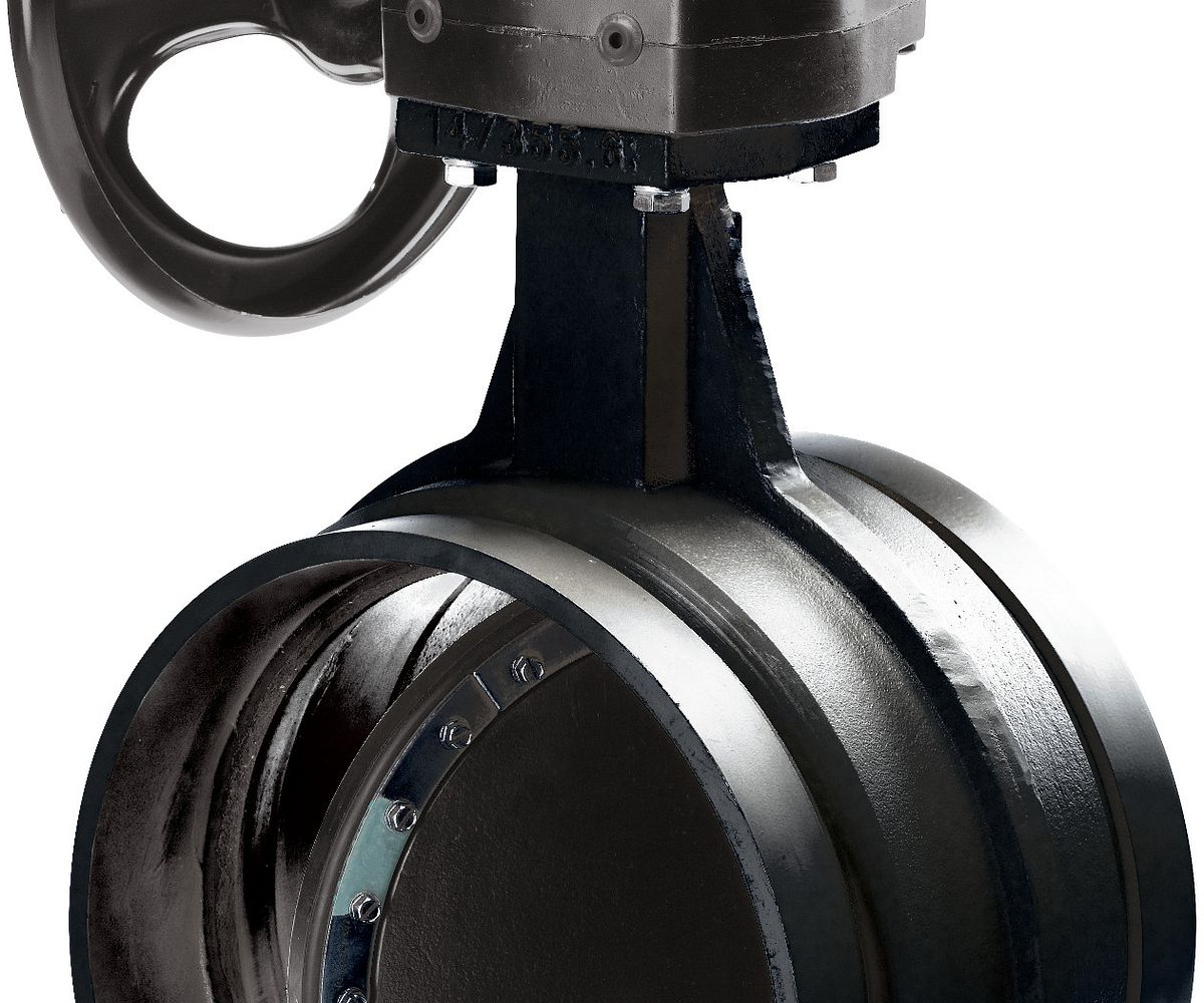 AGS Series W761 Vic™-300 Butterfly Valve