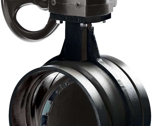 AGS™ Series W761 Vic-300™ Butterfly Valve