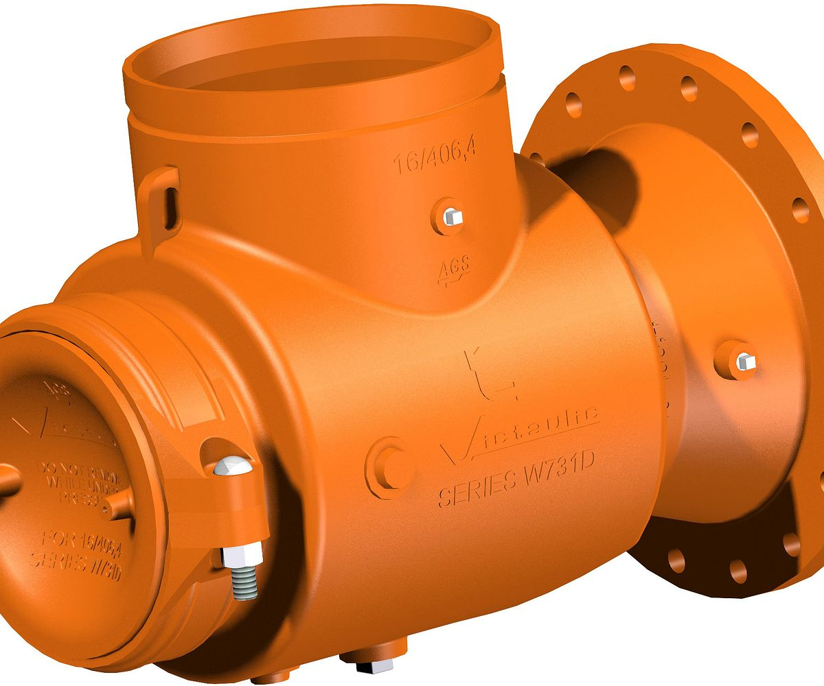 Series W731-D AGS Suction Diffuser