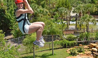 Screamin' Gator Zip Line at Gatorland