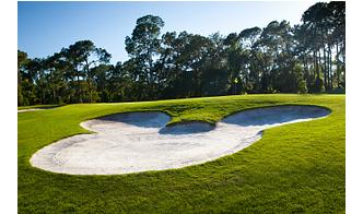 Walt Disney World® Golf