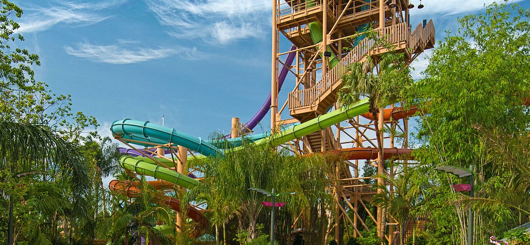 People going down waterslides at Seaworld Orlando's Aquatica.