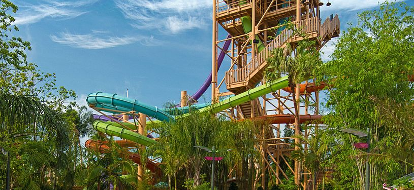 People going down waterslides in Seaworld Orlando's Aquatica