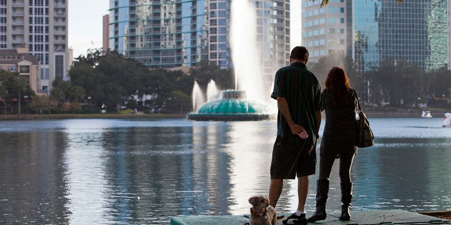 Plan a Perfect Pet-Friendly Vacation in Orlando
