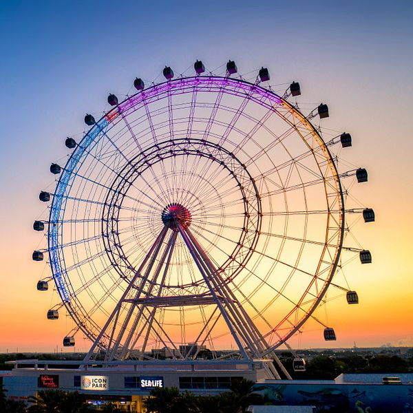 The Wheel at ICON Park at sunset