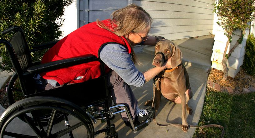 Woman in wheelchair petting a dog