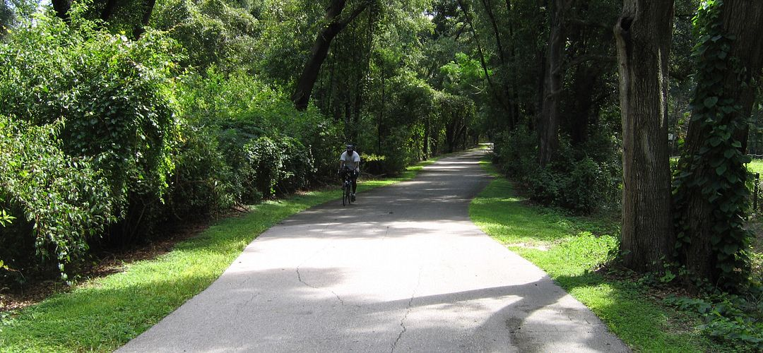 man cycling through a forest trail at daytime