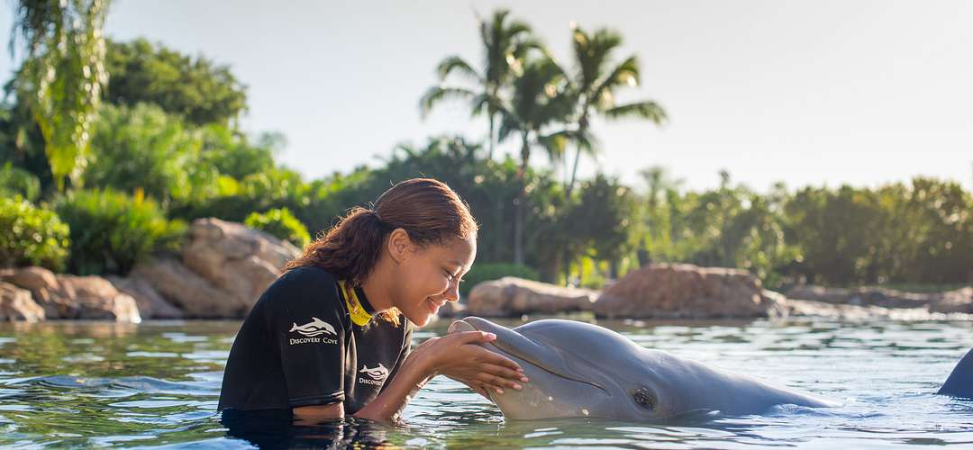 Woman in the water with a dolphin at Discovery Cove at SeaWorld Orlando