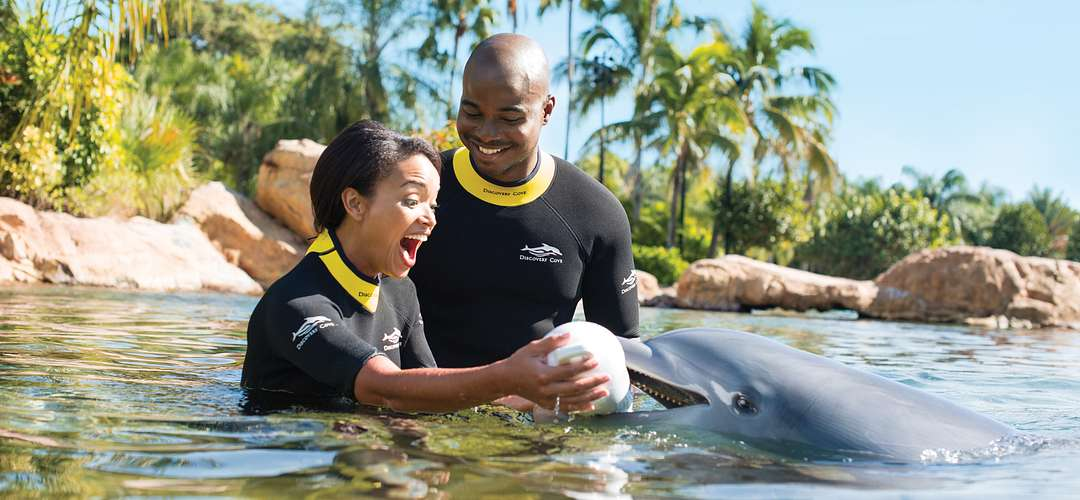Couple interacting with a dolphin at Discovery Cove in Orlando