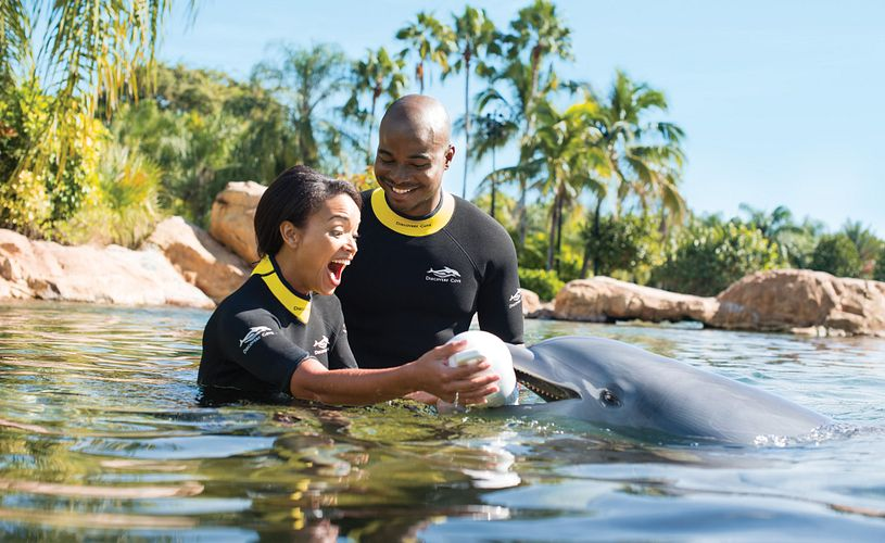 Man proposing to woman in water with the help from a dolphin at Discovery Cove in Orlando