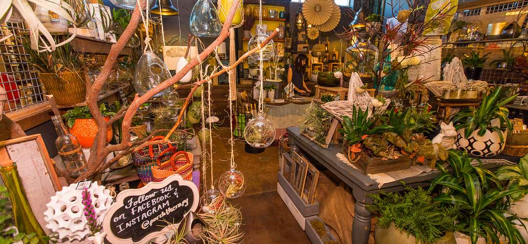 Interior of the Porch Therapy plant store located at East End Market in Orlando