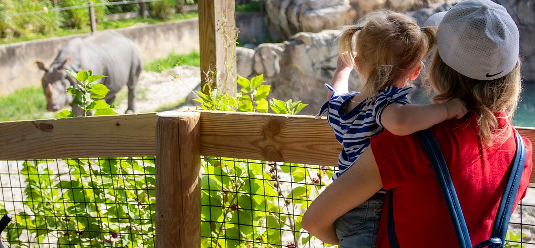 Take a Walk on the Wild Side at Orlando Zoos and Gardens