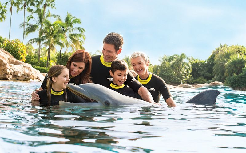 Family of five posing with dolphin in lagoon