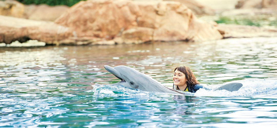Woman riding a dolphin at Discovery Cove