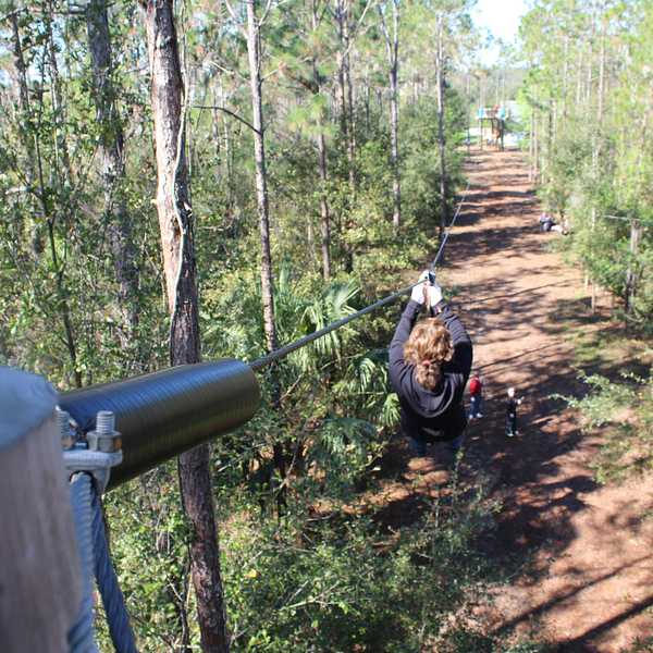 Discounted Orlando Tree Trek Adventure Park Tickets