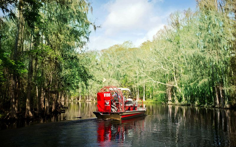Rear of airboat in swamp