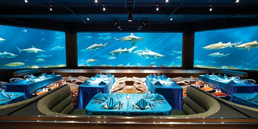 Sharks Underwater Grill at SeaWorld Orlando