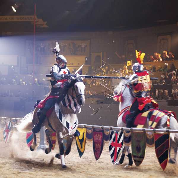 Your Trusted Source for Discounted Medieval Times Dinner Show & Tournament Tickets
