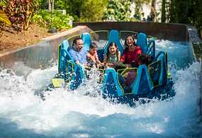 Your Official Source for discount SeaWorld, Busch Gardens & Aquatica Tickets