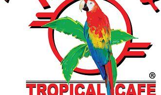 Mango's Tropical Cafe - Orlando