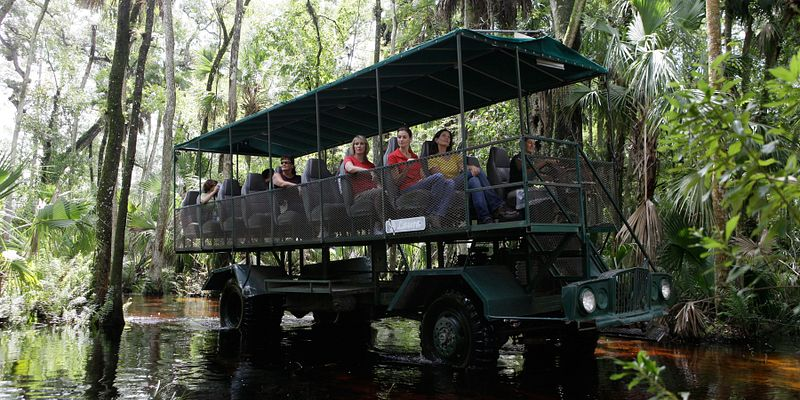 Swamp buggy from Forever Florida - Ziplines & Adventures in the Wild