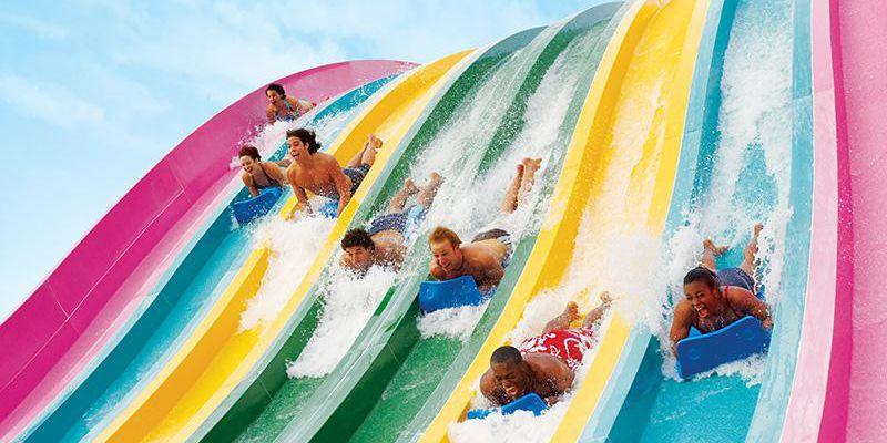 Aquatica, SeaWorld's Waterpark waterslide race