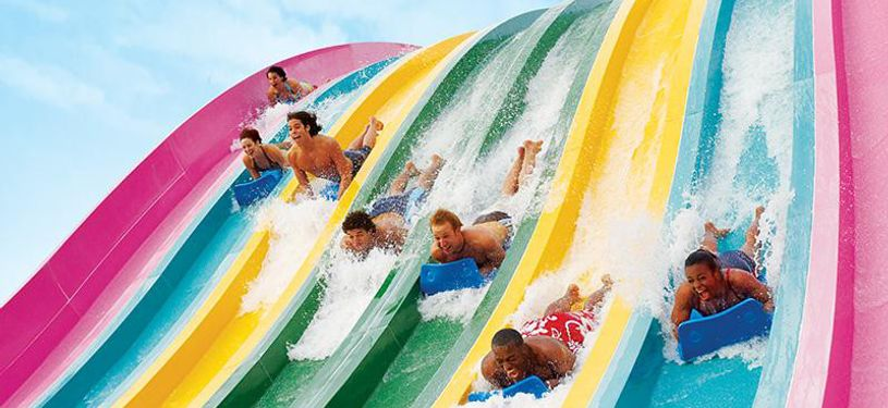 Aquatica, SeaWorld's Waterpark waterslide race