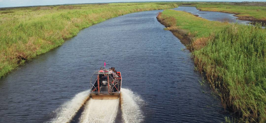 An aerial view from behind an airboat navigating through the swamp