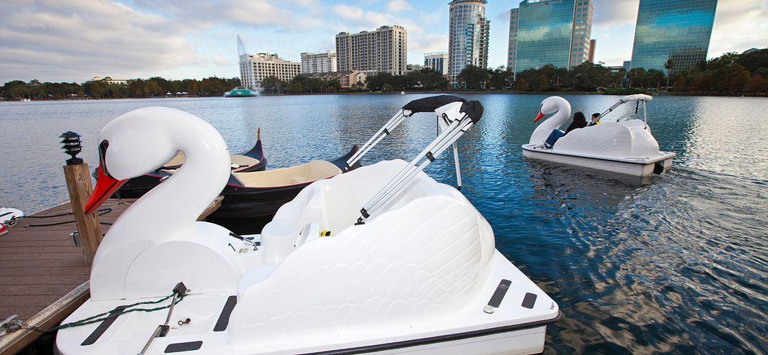 Swan-Shaped Paddleboats at Lake Eola Park in Downtown Orlando