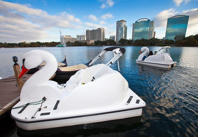 Swan-Shaped Paddleboats at Lake Eola Park in Downtown Orlando