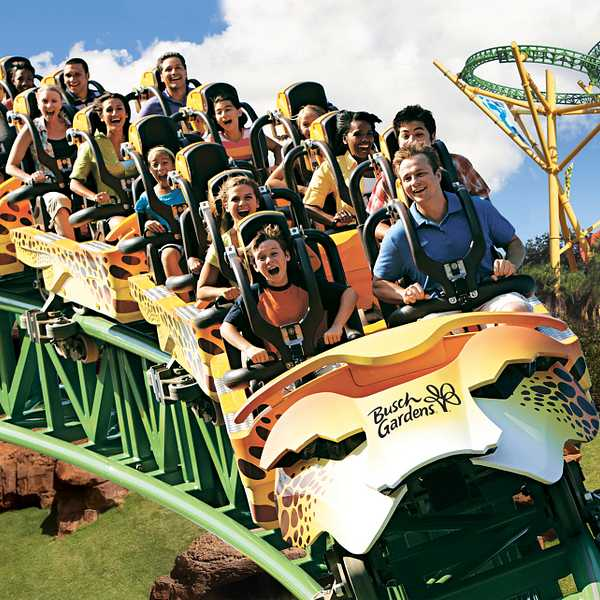 Cheetah Hunt roller coaster ride at Busch Gardens Tampa Bay