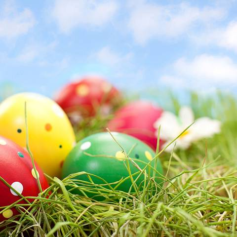 Huevos pintados de Pascua entre la grama y las flores