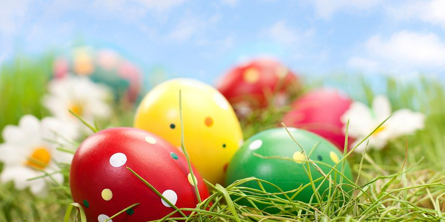 Easter is on April 1 this year, and we have details on holiday dining options at restaurants throughout Orlando.