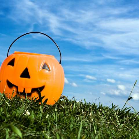 Jack-o-lantern candy bucket set in the grass