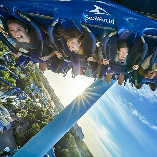 SeaWorld Orlando guests riding Manta