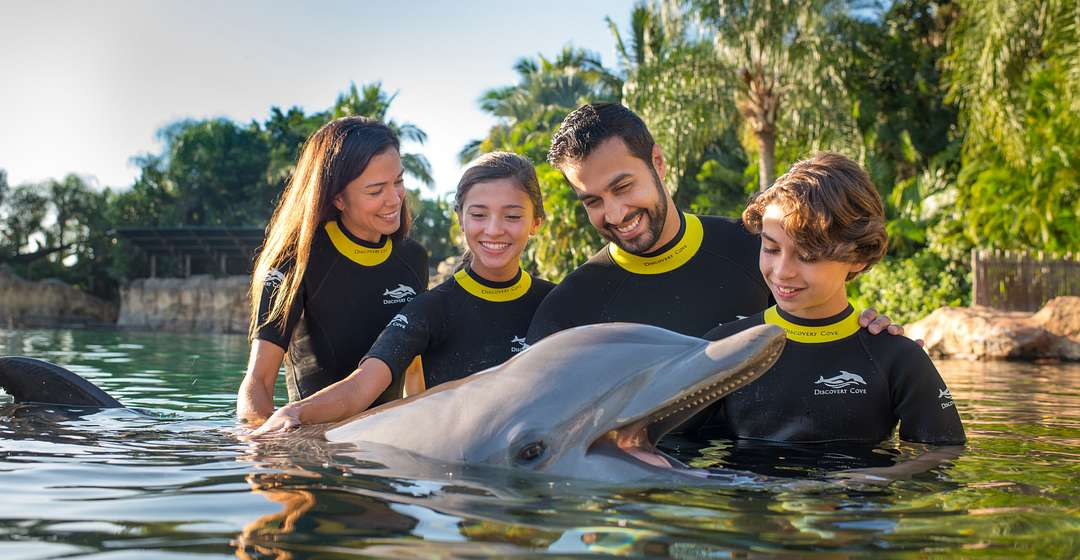 Family interacting with a dolphin at Discovery Cove