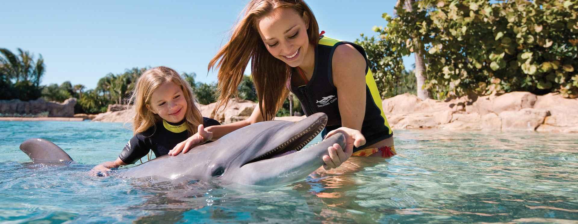 Mujer y su hija acariciando un delfín dentro de una laguna de Discovery Cove