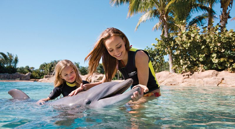 Older and younger sister petting a dolphin at Discovery Cove.