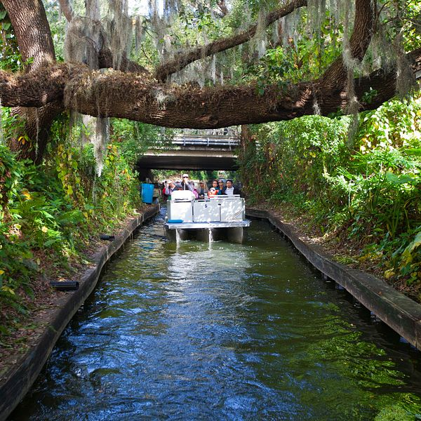 Winter Park Scenic Boat Tour Tickets