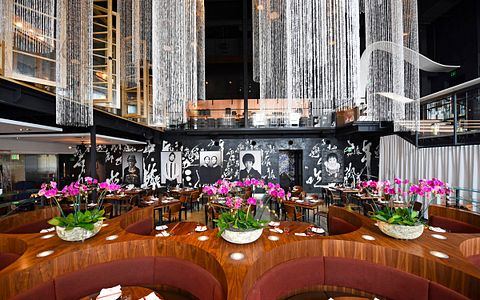 Morimoto interior dining Pan asian dining experience
