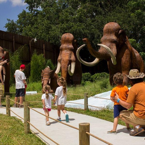 Discounted Dinosaur World Theme Park Tickets
