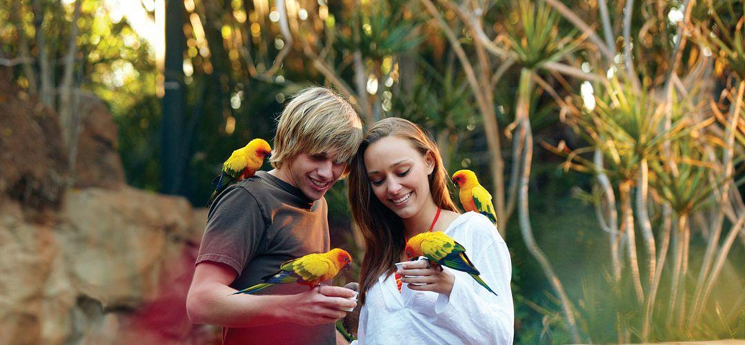 Teens holding and feeding birds