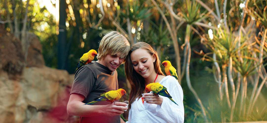 Teens holding and feeding birds at Discovery Cove in Orlando